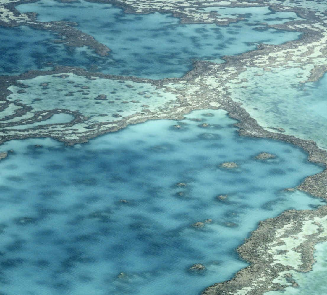 Grande barrière de corail australienne, Queensland, Australie