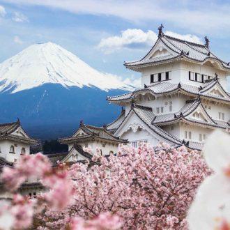 Mont Fuji, Chateau Himeki, Cerisiers en fleur, Japon