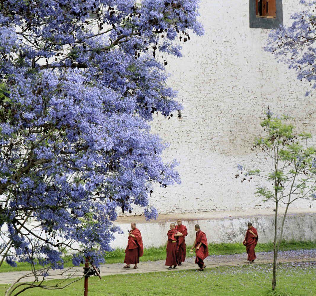 Moines dans un temple de Punakha, Bhoutan
