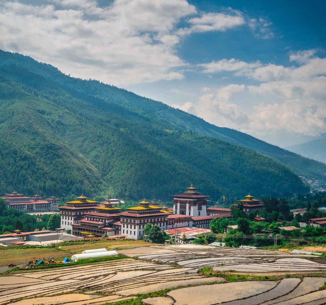 Rizière, Thimphou, Bhoutan