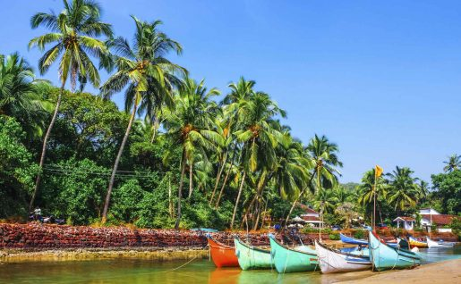 Barques de pêche, Goa, Inde