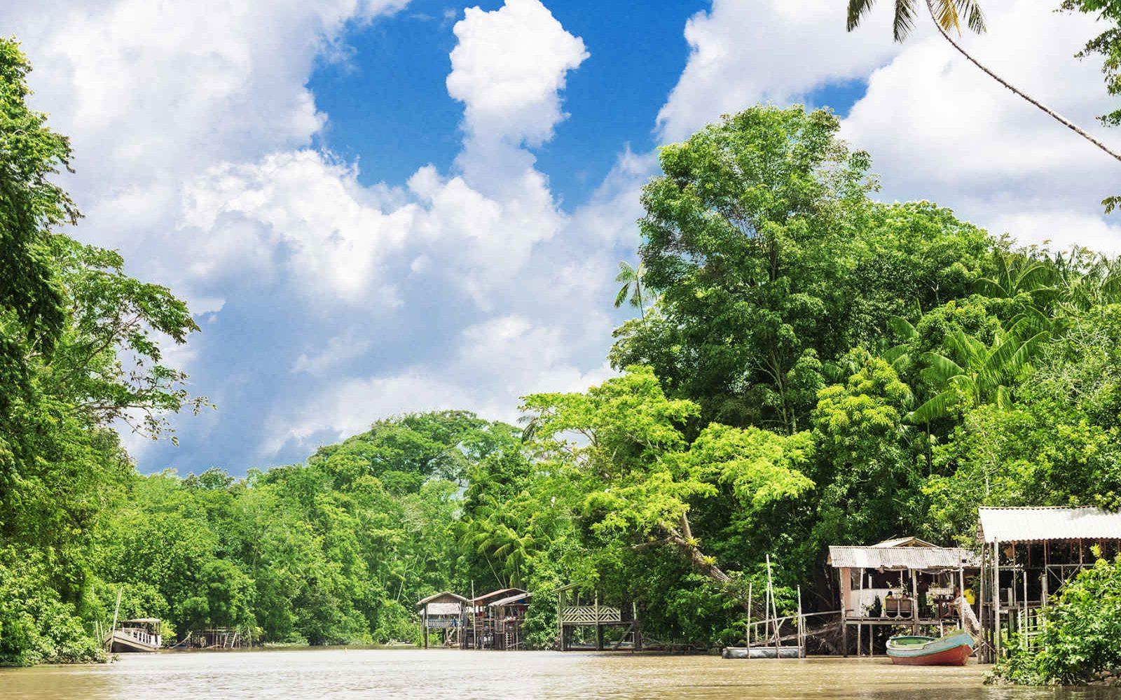 Fleuve Amazone, Amazonie, Brésil