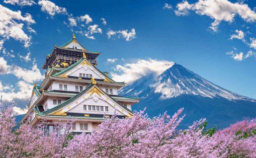 Mont Fuji et Chateau, Osaka, Japon