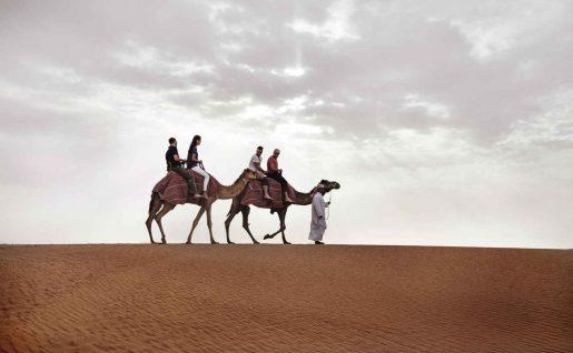 Balade en chameaux, Désert, Dubaï