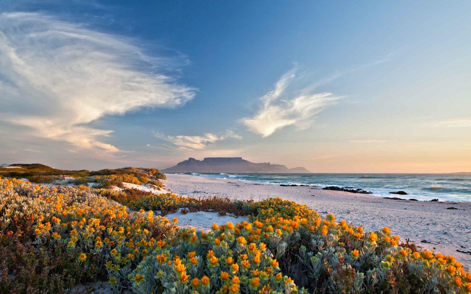 Vue sur la montage de la table, Afrique du Sud