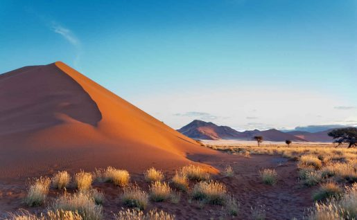 Dunes de Sossusvlei, Désert de Namib, Namibie