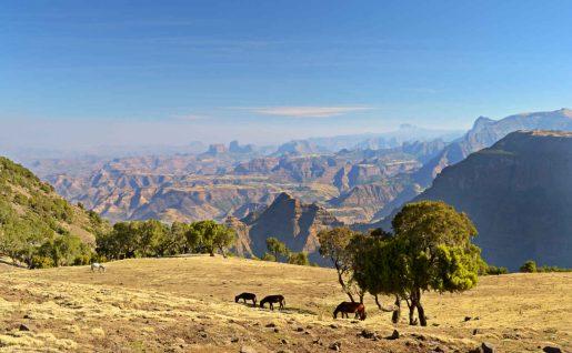 Montagnes Simien, Ehiopie