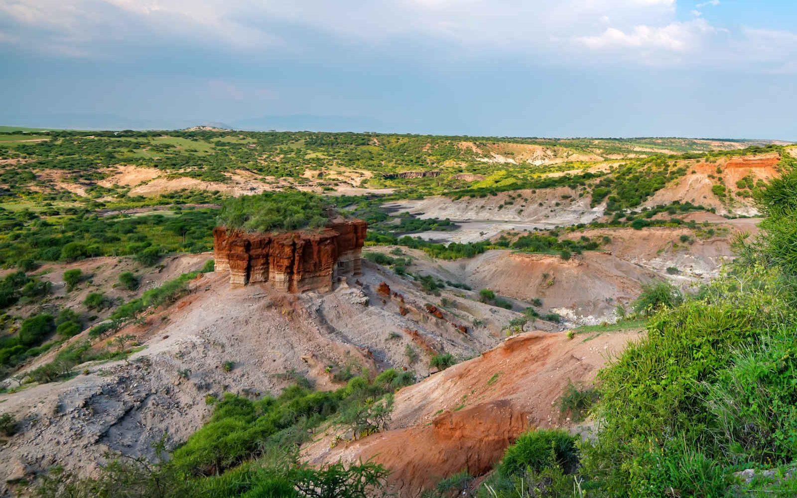 Gorges d'Olduvai, Réserve de Serengeti, Tanzanie