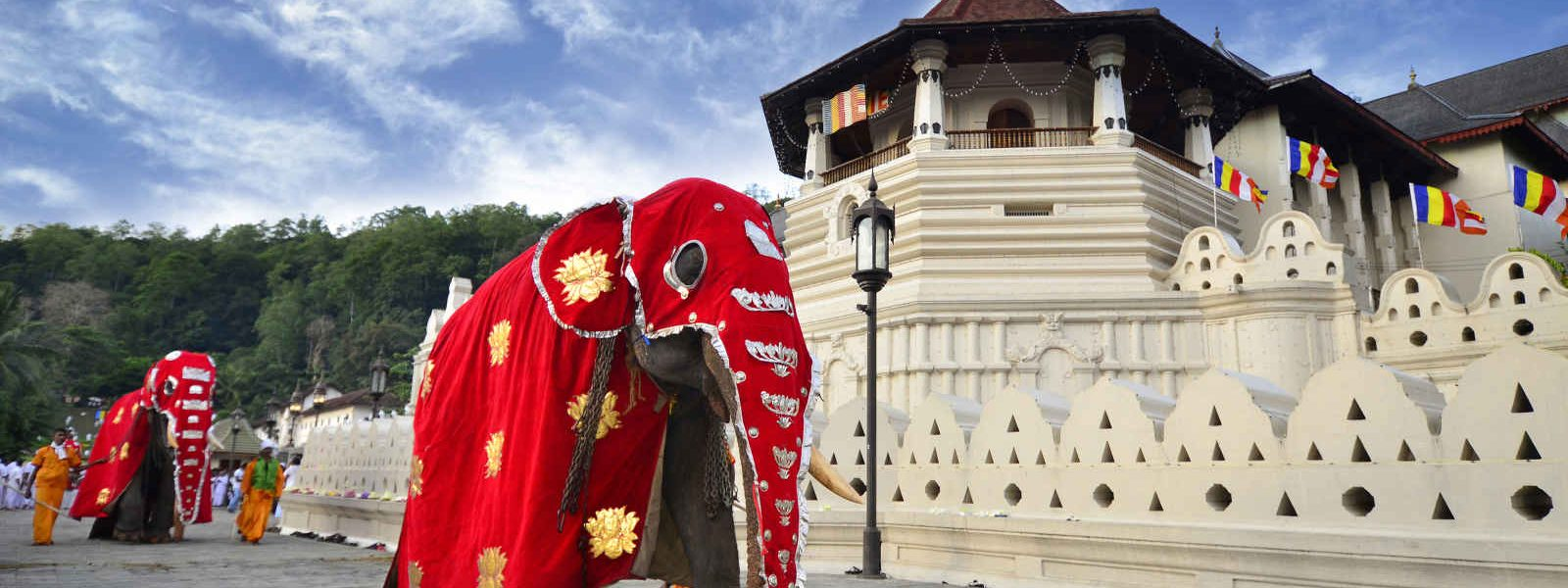Temple, Elephants, Kandy, Sri Lank