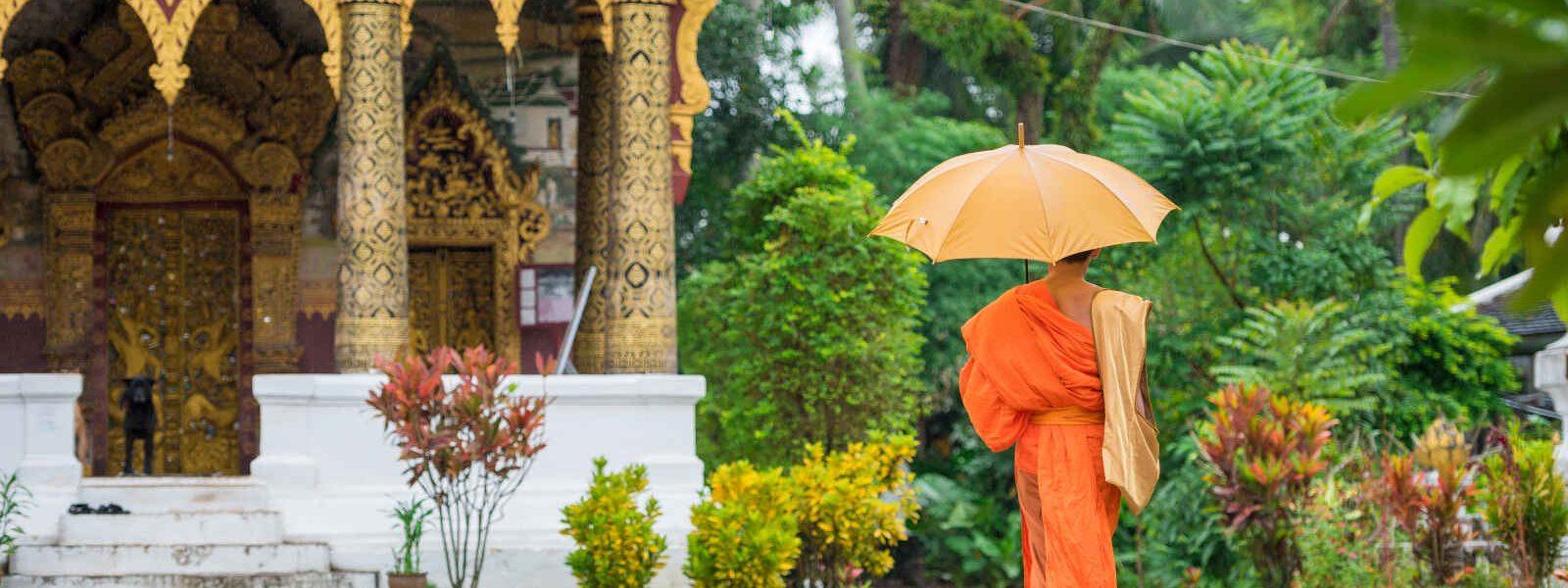 Moine à l'entrée d'un temple, Luang Prabang, Laos